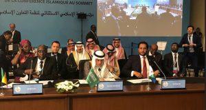 التعاون الاسلامي تدعوا الي ايفاد قوة دولية لحماية الفلسطينيين